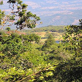 VUMBA-MOUNTAIN-RANGE