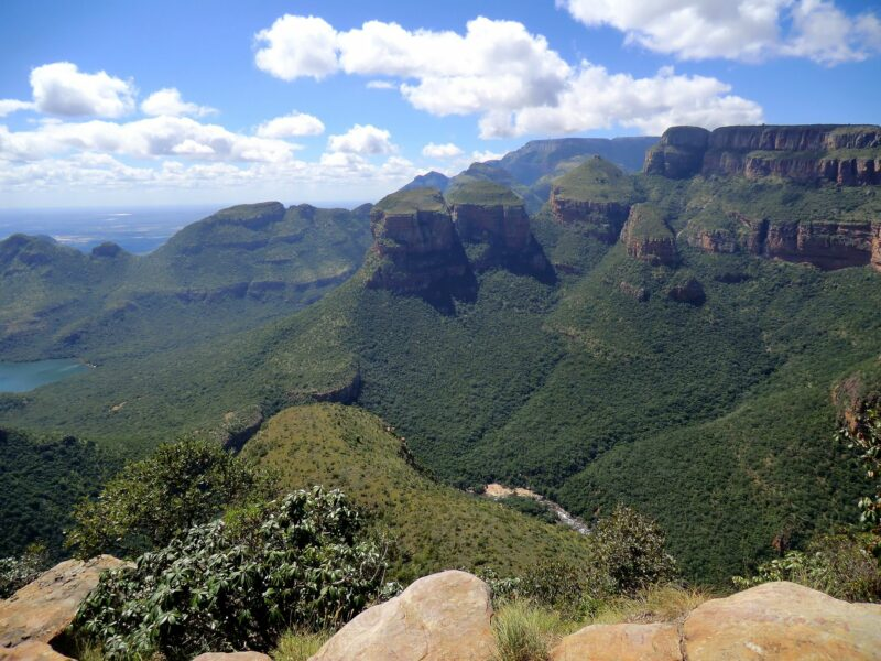 SAFARI, WINE AND THE MOTHER CITY