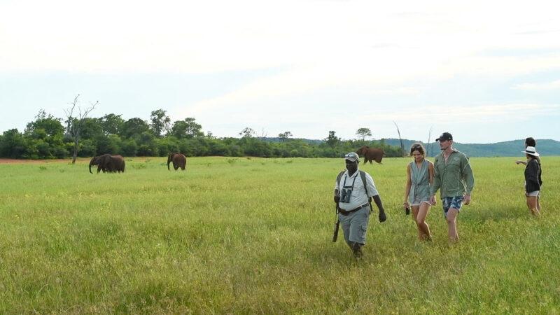 ZIMBABWE IN STYLE