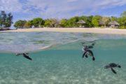 MOZAMBIQUE ISLAND LIVING